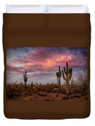 Cotton Candy Pink Sonoran Sunrise  Duvet Cover