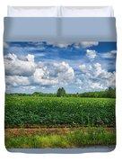 Cotton Fields Of Sc Duvet Cover