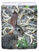 Cottontail Rabbit 4320-080917-1 Duvet Cover