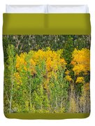 Cottonwood Pass Gold Viii Duvet Cover