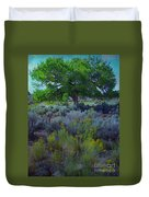 Cottonwood Tree In Old Field Duvet Cover
