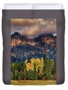 Cottonwoods Fir Trees Fall Color Grand Tetons Nat Duvet Cover by Dave Welling