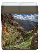Cottonwoods In The Canyon Duvet Cover