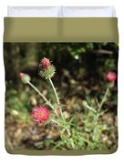 Coulter's Thistle Duvet Cover