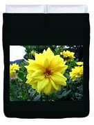 Country Dahlias Duvet Cover