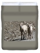 Couple Of Cuties- Baby Bighorn Duvet Cover