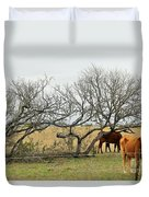 Cows 015 Duvet Cover