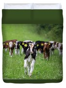 Cows Duvet Cover
