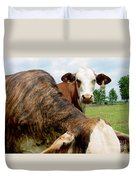 Cows8938 Duvet Cover