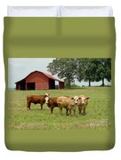 Cows8954 Duvet Cover