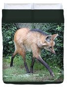 Coyote Duvet Cover