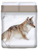 Coyote Winter Duvet Cover