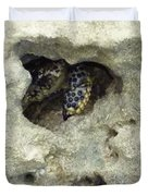 Crab Hiding In A Rock On The Seashore Duvet Cover