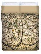 317805-cracked Mud Patterns  Duvet Cover