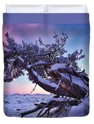 Craters Of The Moon Duvet Cover