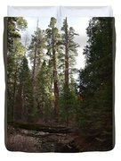 Creek And Giant Sequoias In Kings Canyon California Duvet Cover