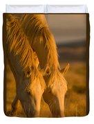 Cremello Sunset Duvet Cover