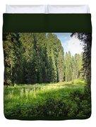 Crescent Meadow In Sequoia Duvet Cover