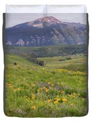 Crested Butte Valley Duvet Cover