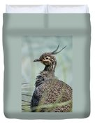 Crested Tinamou Duvet Cover