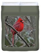 Crimson Cardinal Duvet Cover