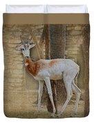 Critically Endangered Dama Gazelle Duvet Cover