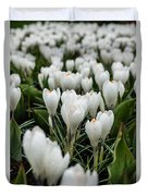 Crocuses 5 Duvet Cover