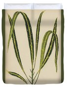 Croton Variegatum Angustifolium Duvet Cover