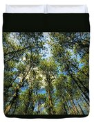 Crystal Lake Il Pine Grove And Sky Duvet Cover
