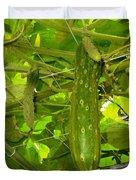 Cucumber On Tree In The Garden 1 Duvet Cover
