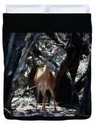 Curious Bambi Duvet Cover