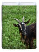 Curious Goat With Very Long Shaggy Fur Duvet Cover