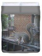 Curious Gray Squirrel  Duvet Cover