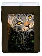 Curious Kitten Duvet Cover by Meirion Matthias