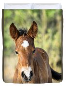 Curious Little Colt  Duvet Cover