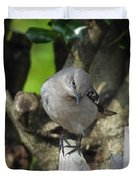Curious Mockingbird Duvet Cover