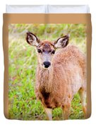 Curious Mule Deer Frolicking On A Colorado Spring Afternoon Duvet Cover