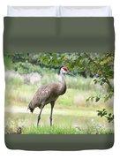 Curious Sandhill Crane Duvet Cover