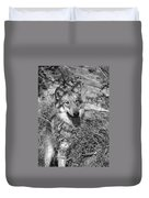 Curious Wolf Pup Duvet Cover