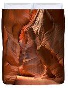 Curves Under The Desert Floor Duvet Cover