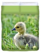 Cute Baby Goose In A Grass Field Duvet Cover