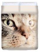 Cute Cat Close-up Portrait Duvet Cover