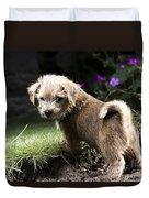 Cute Dog Duvet Cover
