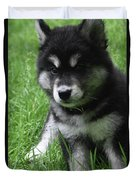 Cute Fluffy Alusky Puppy Sitting Up In A Yard Duvet Cover