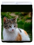 Cute Grey White And Orange Cat Poses And Gazes Duvet Cover