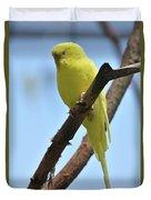 Cute Little Parakeet Resting On A Branch Duvet Cover