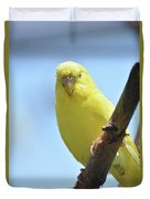 Cute Little Yellow Budgie Bird In Nature Duvet Cover