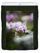 Cyclamen At Lachish 1 Duvet Cover