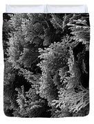 Cypress Branches No.1 Duvet Cover