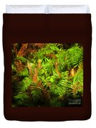 Cypress Knees In Ferns Duvet Cover